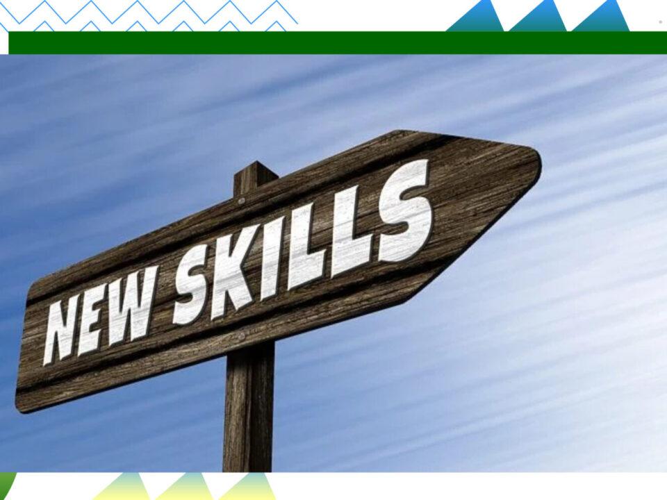 """Schild in Pfeilform (Wegweiser) mit der Aufschrift """"New Skills"""""""